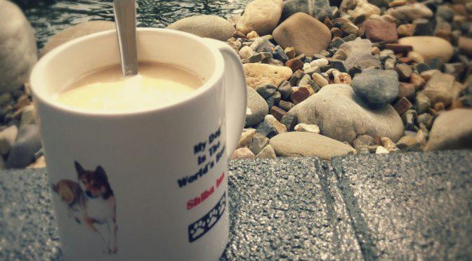 Mit Eiskaffee am Teich